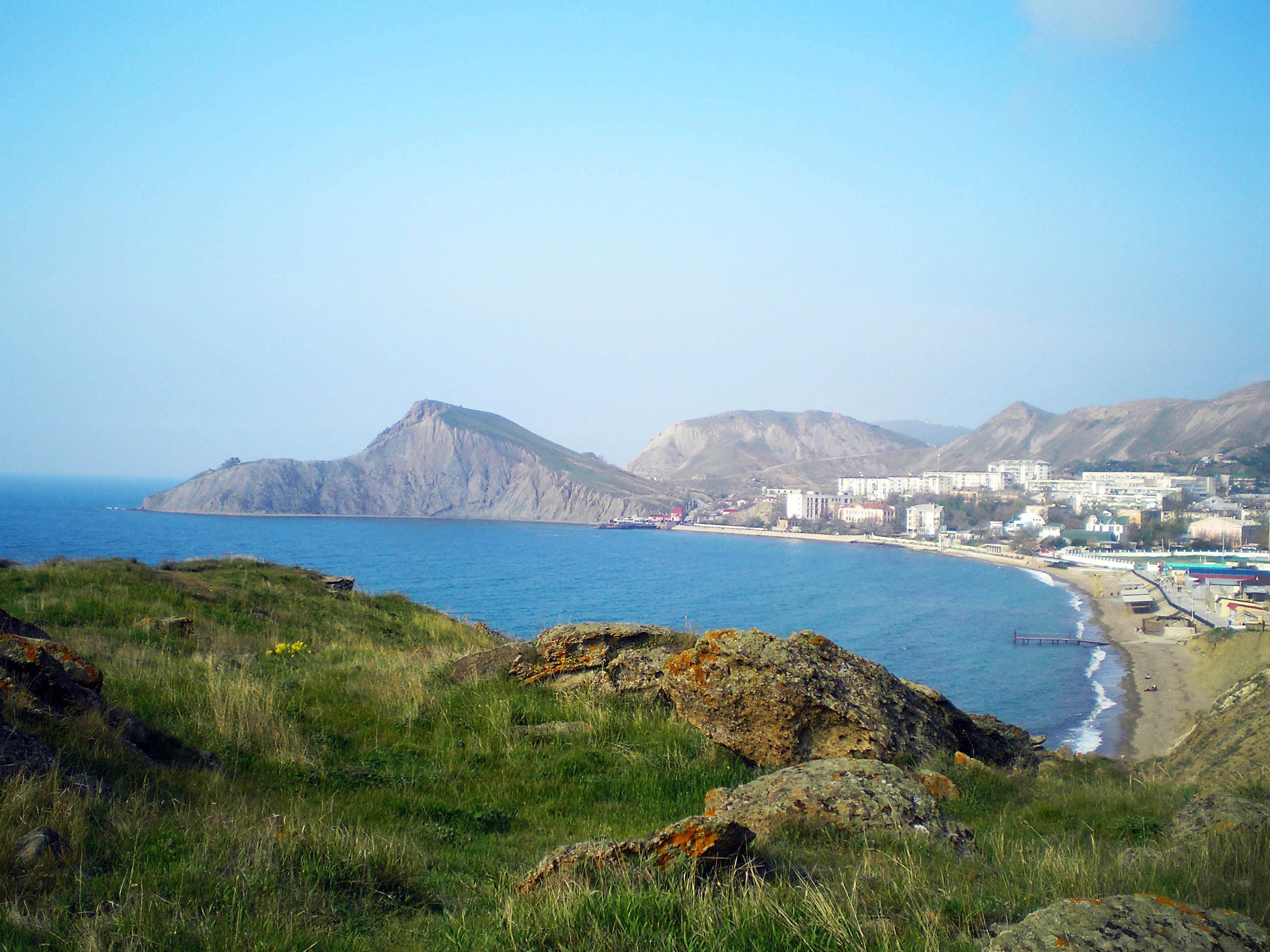 многих крым орджоникидзе фото пляжей травянистое растение